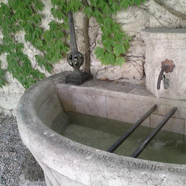 Margelle Gravée en pierre sur une fontaine à Fleurance
